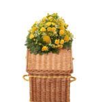 Traditional Buff Willow Coffin Yellow Bands and Handles